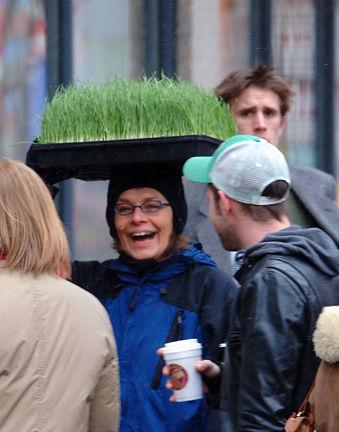 guylaine-wheatgrass-2.jpg