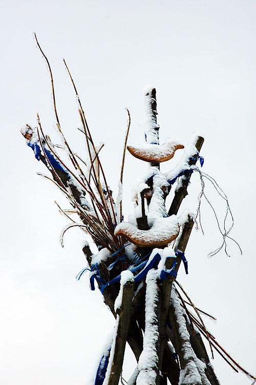 birds-w.jpg