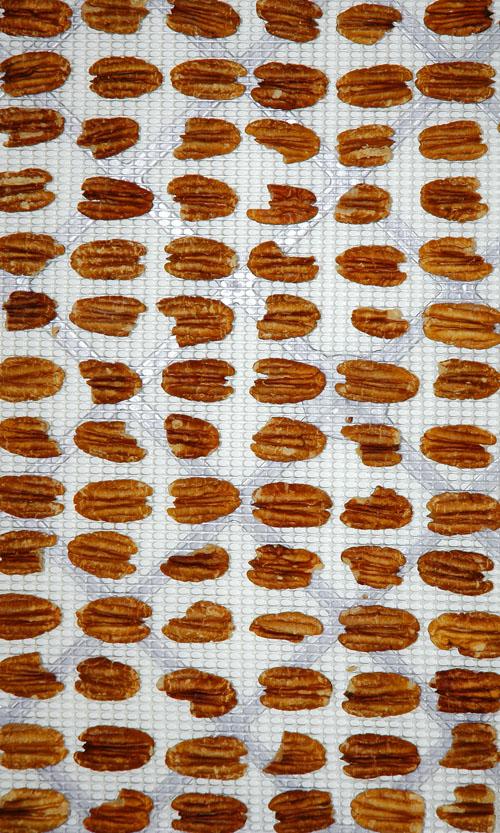nuts-w.jpg