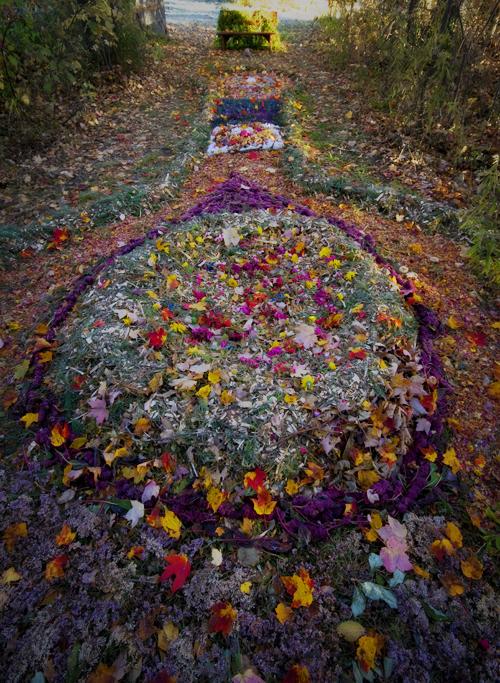 Le sentier fleuri - Photo André Séguin